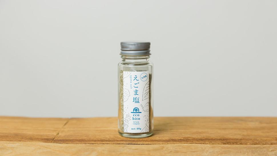 salt-front