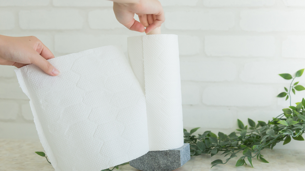 tear-up-kitchen-paper-from-holder