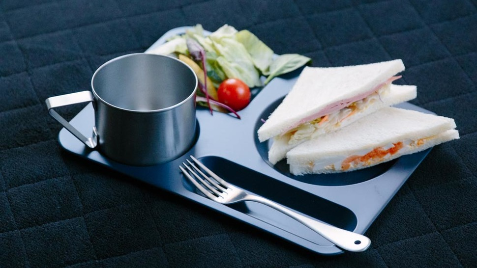 sandwitch-and-salad-on-the-tray