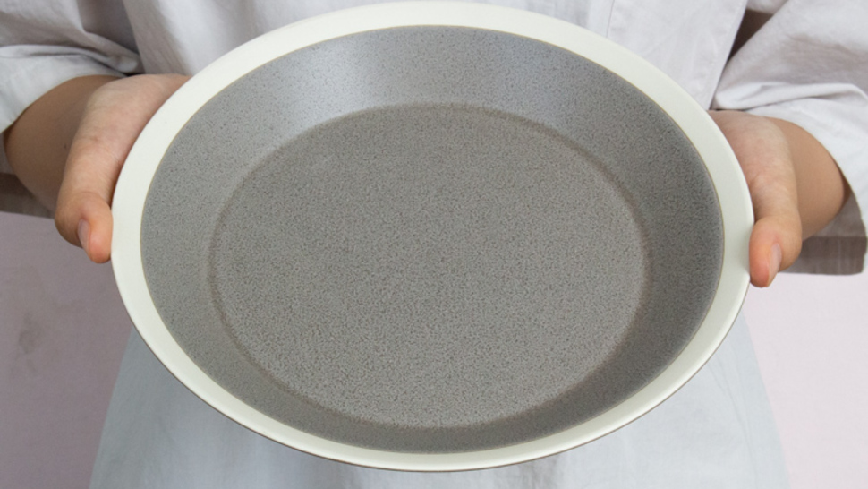 dishes-plate-220-holding