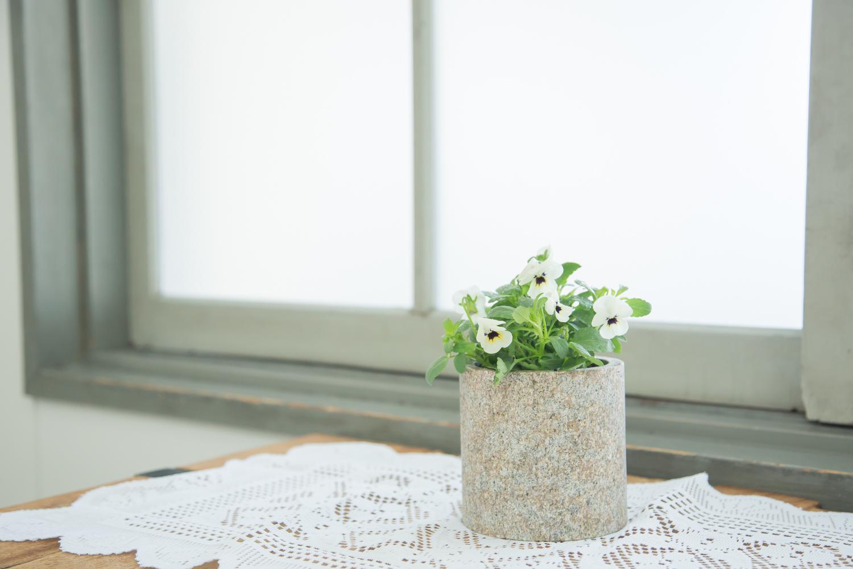 おしゃれな石素材の植木鉢で緑と暮らそう