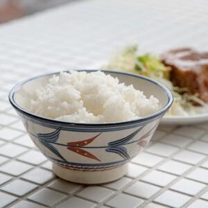 陶眞窯 4寸マカイ 茶碗